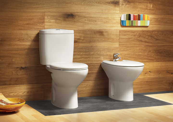 . Suitable Roca toilets - Why Do We Need It